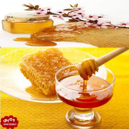 عسل زنبوروحشی